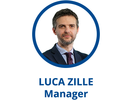 Parva consulting Zille